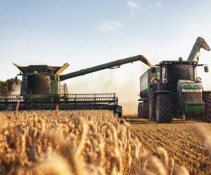 Mähdrescher und Traktor bei der Ernte auf einem Weizenfeld